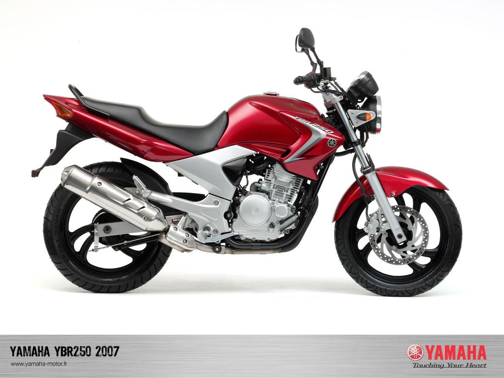 2005 yamaha r6 manual download