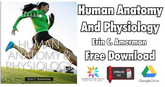 anatomy and physiology for the manual therapies pdf