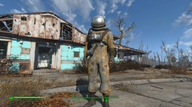 fo4 how to download manual enbs